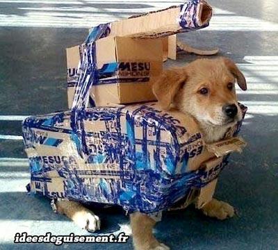 Free costume of tank