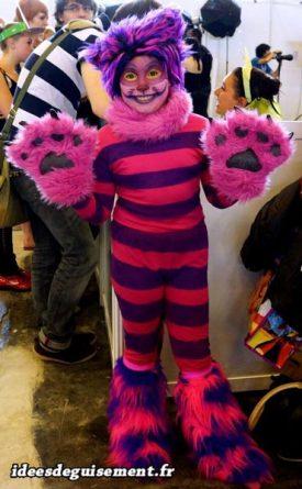 Costume of Cheshire Cat