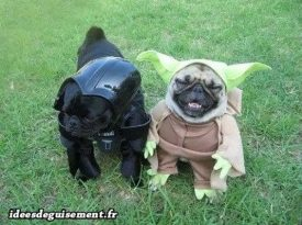 Costume of Dark Vador and Yoda