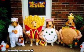 Fancy dress of Hamburger